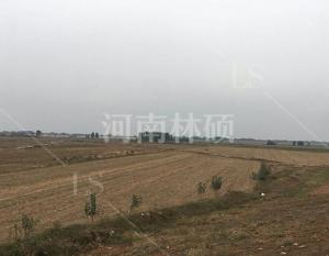 2017焦作市土地局占用耕地补偿项目