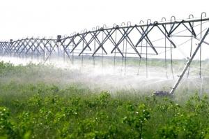 农业水利灌溉节水新模式