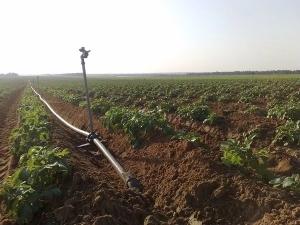 灌溉水泵的选择