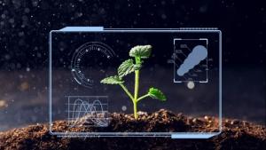 智慧农业——赋能农业现代化高质量发展